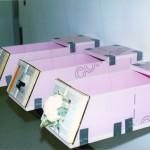 Petit guide de la séduction, 2003